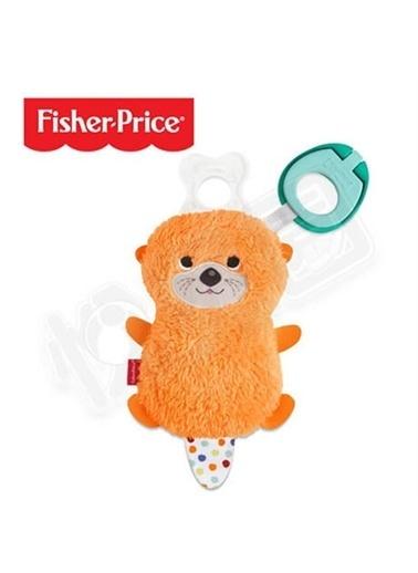 Fisher Price Fisher Price Clipimals™ Emzik Tutacağı Arkadaşlar - Su Samuru GJD29 Renkli